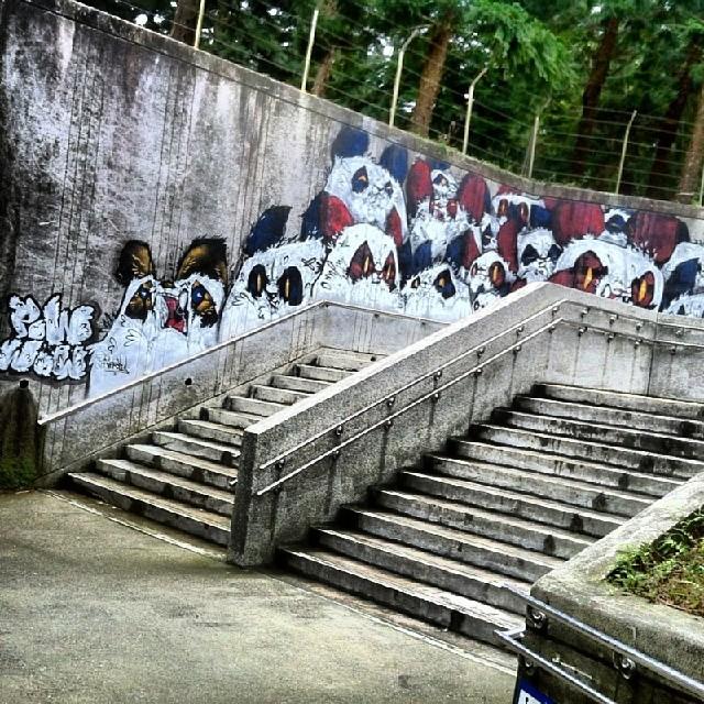 Banksy Street Art Tours Taiwan #powwowtaiwan #powwow #taipeicity #streetart #taipeicityzoo